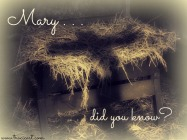 Mary-did-you-know